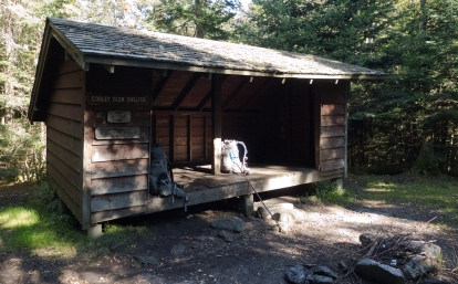 Cooley Glen Shelter